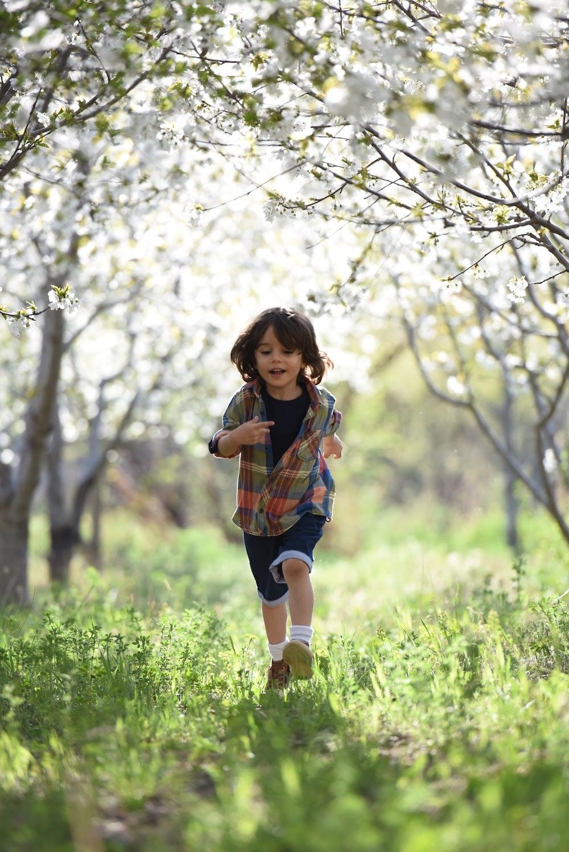 rennend onde de bloesem in de lente
