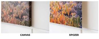 foto op canvas vergelijken met xpozer print